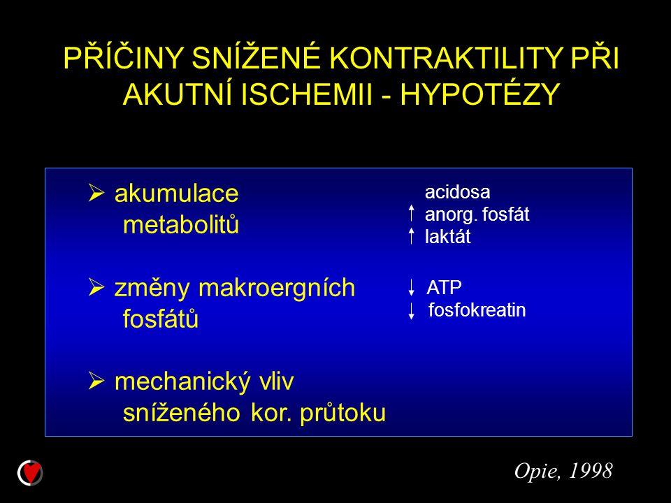 PŘÍČINY SNÍŽENÉ KONTRAKTILITY PŘI AKUTNÍ ISCHEMII - HYPOTÉZY  akumulace metabolitů  změny makroergních fosfátů  mechanický vliv sníženého kor. průt