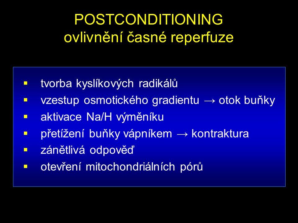  tvorba kyslíkových radikálů  vzestup osmotického gradientu → otok buňky  aktivace Na/H výměníku  přetížení buňky vápníkem → kontraktura  zánětli