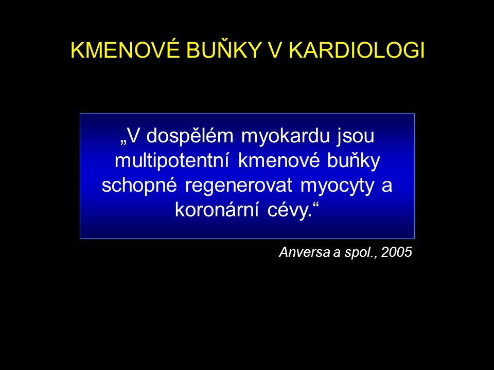"""""""V dospělém myokardu jsou multipotentní kmenové buňky schopné regenerovat myocyty a koronární cévy."""" Anversa a spol., 2005 KMENOVÉ BUŇKY V KARDIOLOGI"""