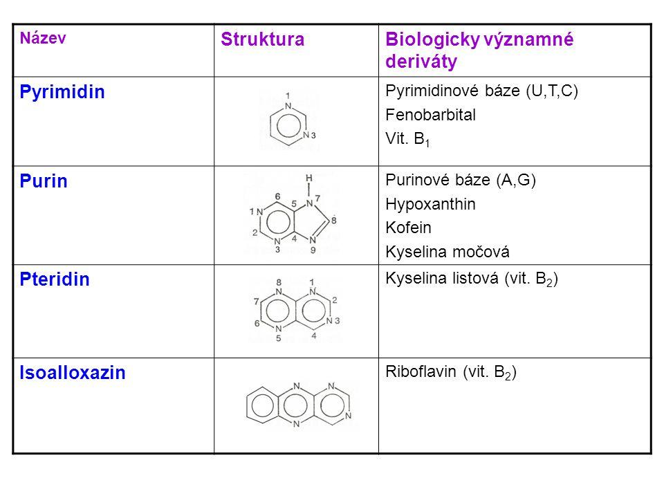 Hem  součástí hemoglobinu  4 pyrolová jádra + Fe 2+  váže kyslík - přenos do tkání Bilirubin  degradační produkt hemu (v RES)  exkrece žlučí  žloutenky