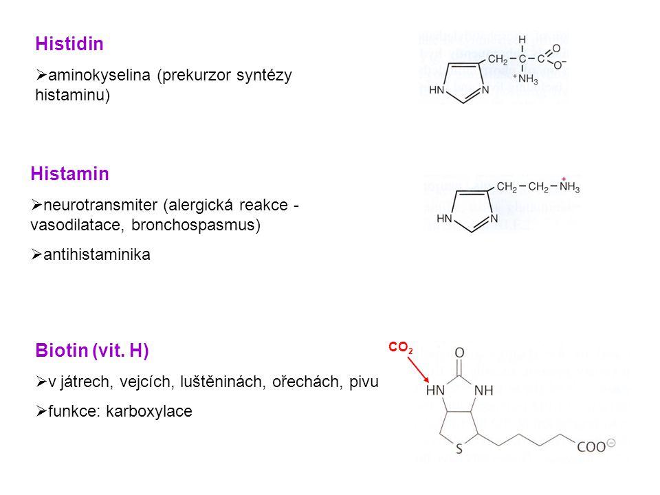 Thiamin (vit.B 1 )  v obilí, vepřovém masu, pivu  nedostatek (choroba beriberi)  funkce: např.