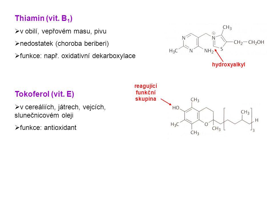 Nikotinamid (niacin)  v masu, ovoci, zelenině, pivu  nedostatek (choroba pelagra) Pyridoxal (vit.