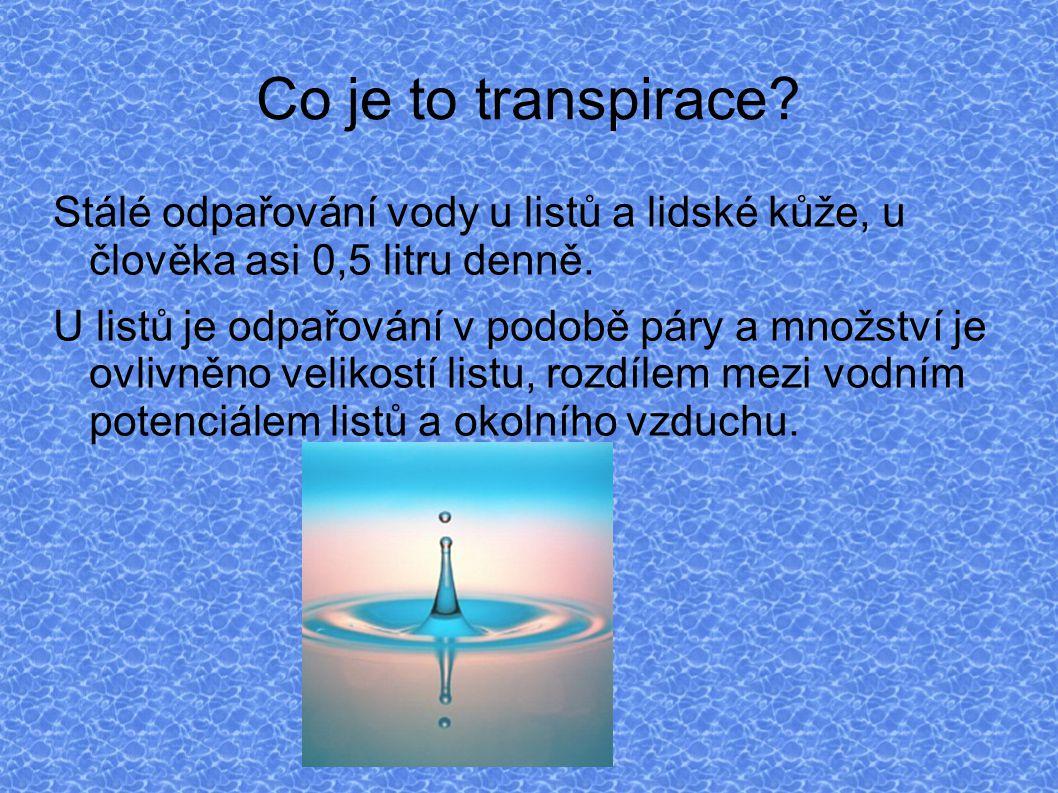 Závěr a pár otázek Otázky: kolik je vody v lidském těle.