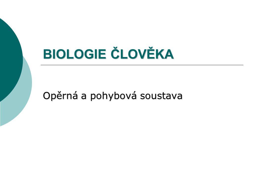 BIOLOGIE ČLOVĚKA Opěrná a pohybová soustava