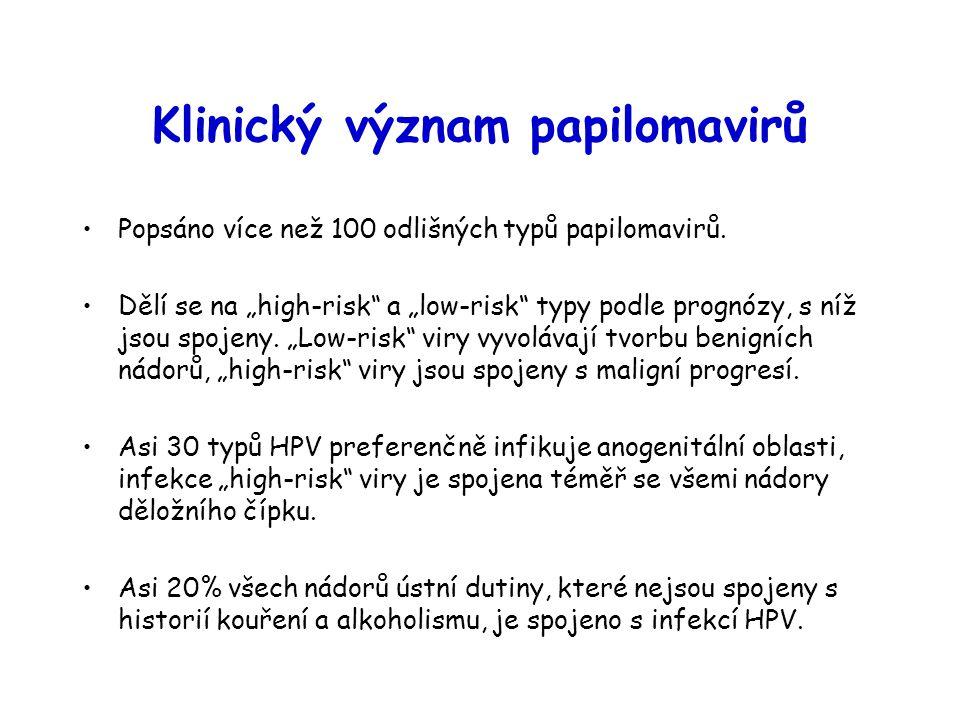 """Klinický význam papilomavirů Popsáno více než 100 odlišných typů papilomavirů. Dělí se na """"high-risk"""" a """"low-risk"""" typy podle prognózy, s níž jsou spo"""
