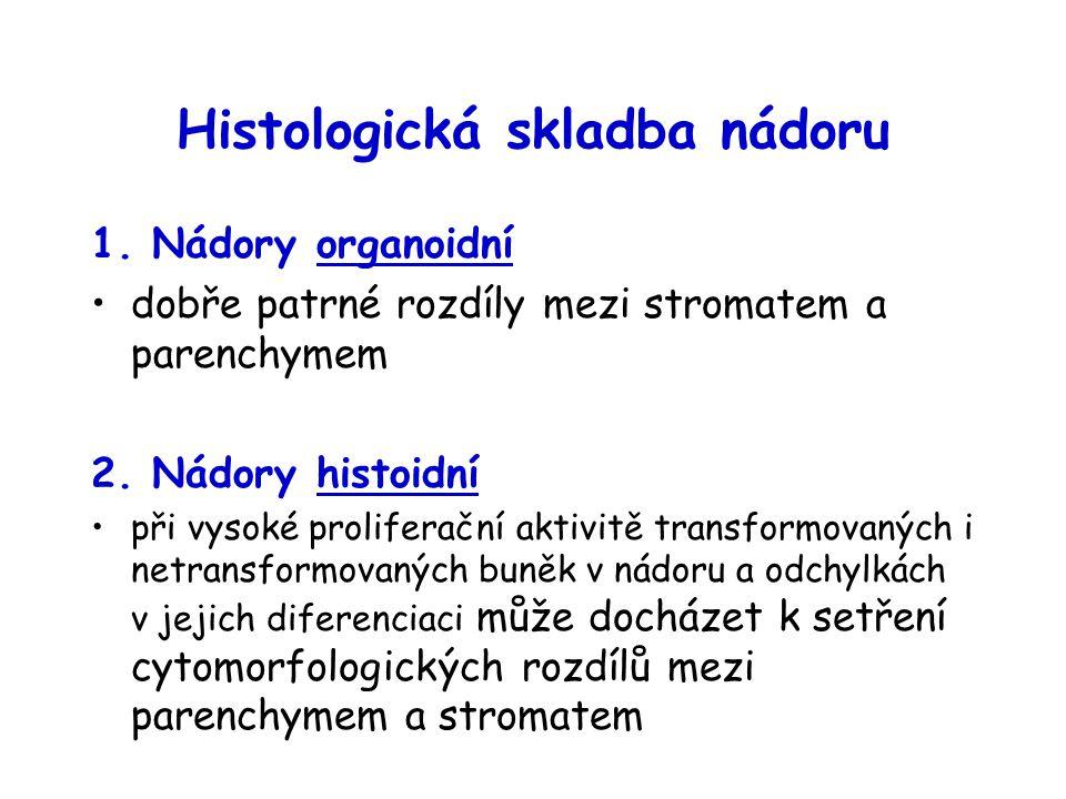 Histologická skladba nádoru 1. Nádory organoidní dobře patrné rozdíly mezi stromatem a parenchymem 2. Nádory histoidní při vysoké proliferační aktivit