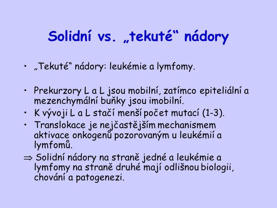 """Solidní vs. """"tekuté"""" nádory """"Tekuté"""" nádory: leukémie a lymfomy. Prekurzory L a L jsou mobilní, zatímco epiteliální a mezenchymální buňky jsou imobiln"""