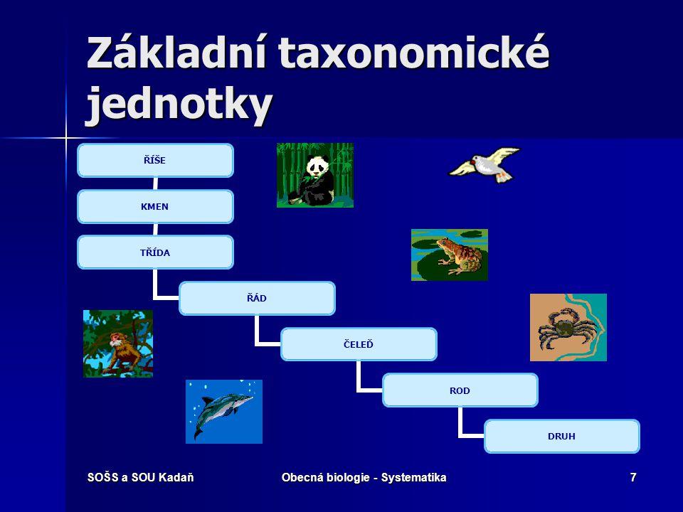 SOŠS a SOU KadaňObecná biologie - Systematika7 Základní taxonomické jednotky ŘÍŠE KMEN TŘÍDA ŘÁD ČELEĎ ROD DRUH