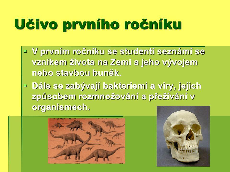 Druhý ročník …  V druhém ročníku si studenti opakují rostliny pomocí vytvořených herbářů  Probírají se například živočišné houby, kroužkovci nebo hmyz.
