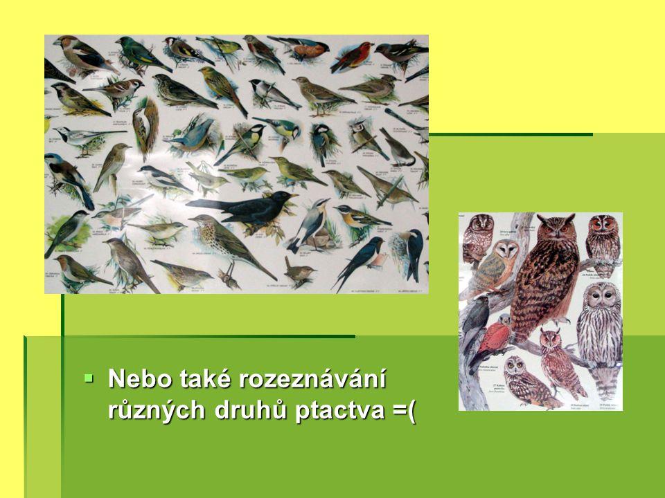  Nebo také rozeznávání různých druhů ptactva =(