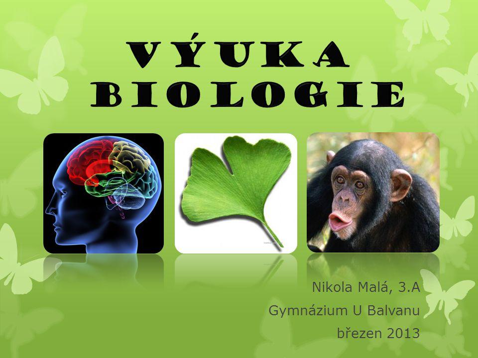 Učebna č.6  zde probíhají klasické hodiny biologie  učebna je vybavena různými exponáty a tématickými plakáty