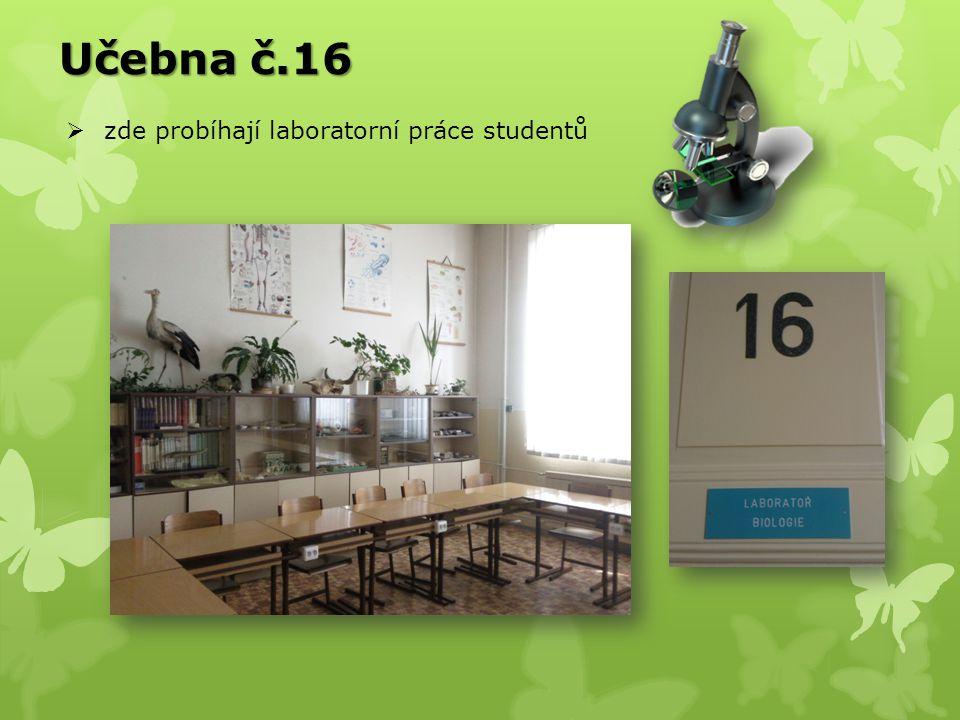 Počet hodin týdně v jednotlivých ročnících + biologický seminář pro 3.