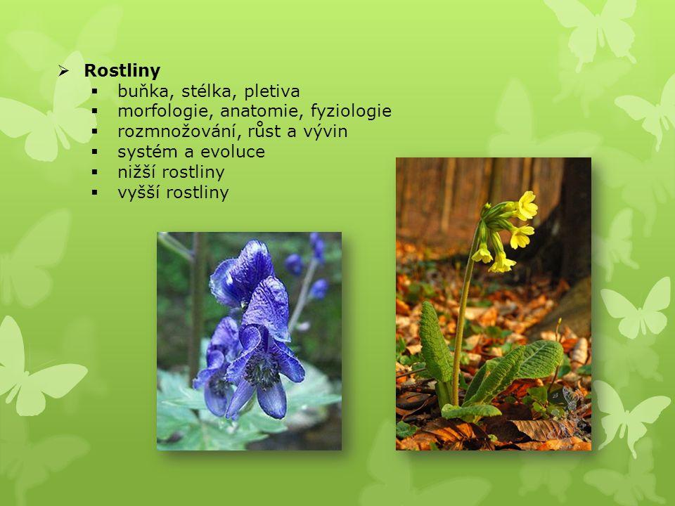  Rostliny  buňka, stélka, pletiva  morfologie, anatomie, fyziologie  rozmnožování, růst a vývin  systém a evoluce  nižší rostliny  vyšší rostliny