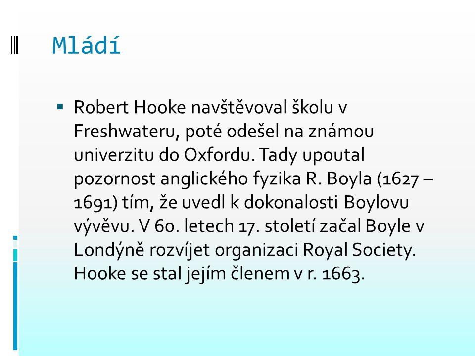 Mládí  Robert Hooke navštěvoval školu v Freshwateru, poté odešel na známou univerzitu do Oxfordu. Tady upoutal pozornost anglického fyzika R. Boyla (