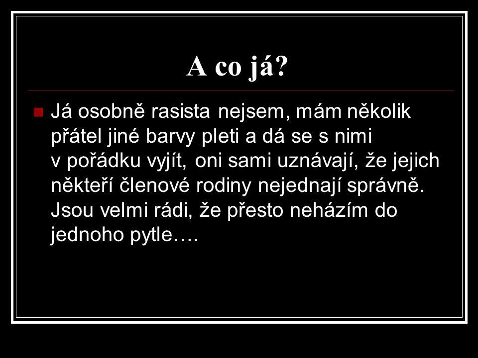 Zdroje: ( Http://zsbobes.blog.cz/0606/uvaha-rasismus [online].
