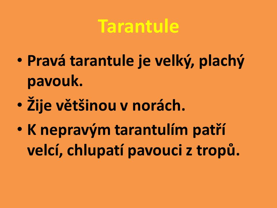Pravá tarantule je velký, plachý pavouk. Žije většinou v norách. K nepravým tarantulím patří velcí, chlupatí pavouci z tropů.