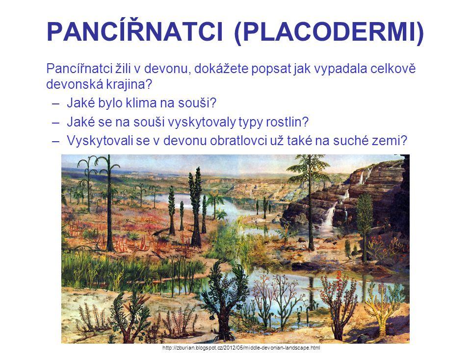 PANCÍŘNATCI (PLACODERMI) Pancířnatci žili v devonu, dokážete popsat jak vypadala celkově devonská krajina? –Jaké bylo klima na souši? –Jaké se na souš