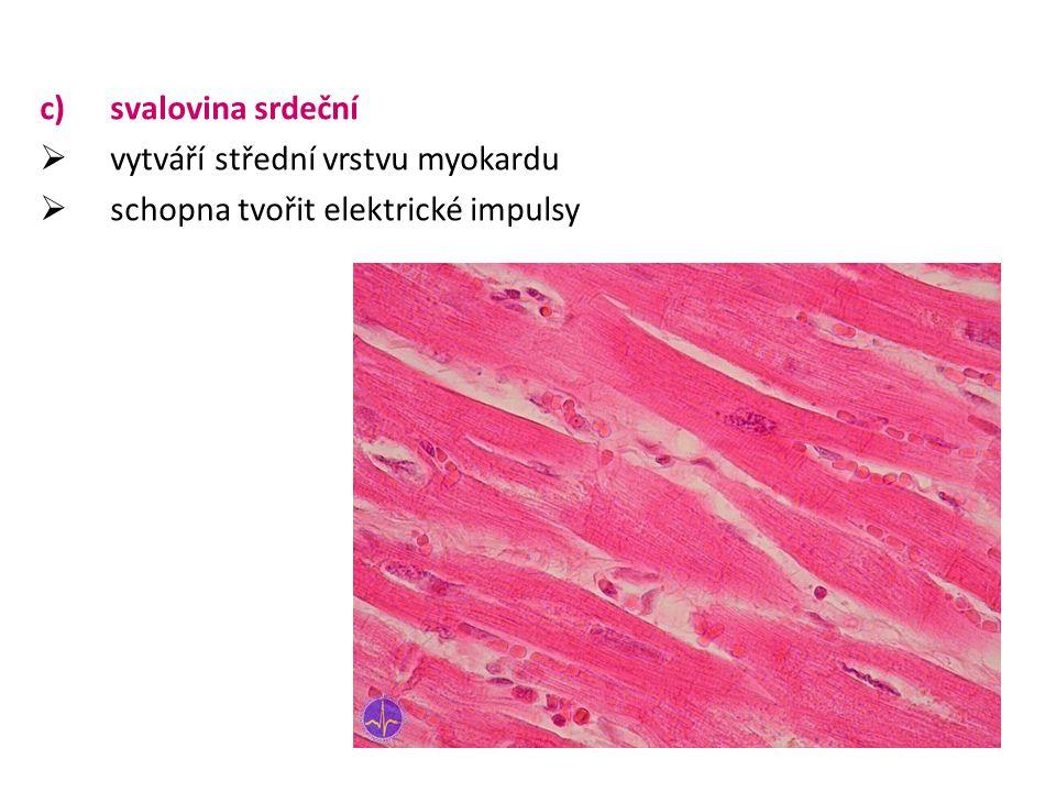 Funkce svalové soustavy 1.zajišťuje pohyb jednotlivých částí těla (končetin, trupu) 2.zajišťuje pohyb těla – lokomoce (přemísťování celého těla) na tomto pohybu se uplatňuje příčně pruhovaná svalovina 3.zajišťuje pohybovou aktivitu vnitřních orgánů na této aktivitě se podílí hladká svalovina 4.zajišťuje srdeční činnost, na této aktivitě se podílí srdeční svalovina 5.schopnost svalu vytvářet kontrakce – stažení – tuto schopnost mají všechny tři typy svalové tkáně
