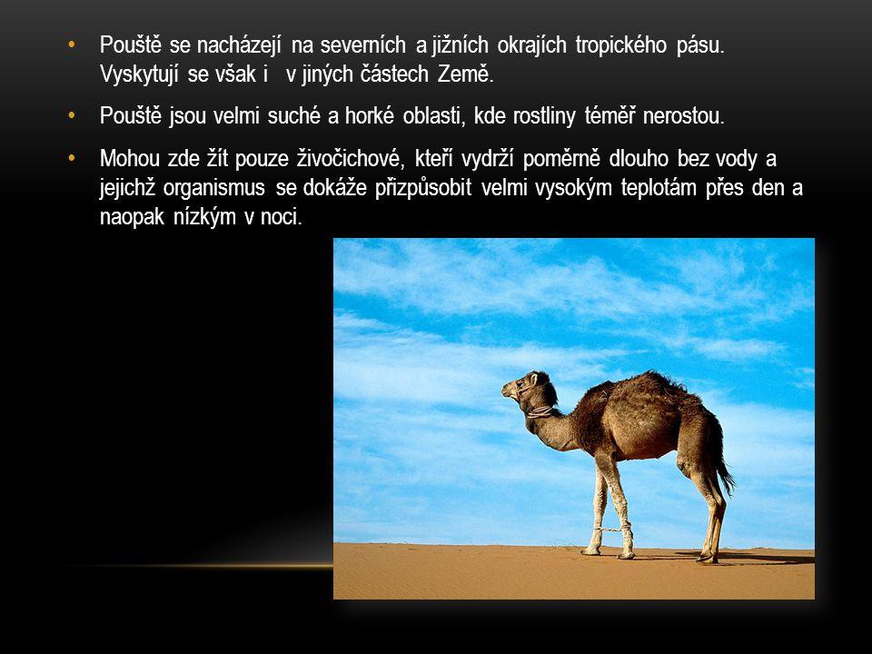 ZDROJE : http://4.bp.blogspot.com/_ZgjWQ_sKVoY/S--- yw9nobI/AAAAAAAABFA/RCBOFi3OmdQ/s1600/lone_palm_sahara_desert.jpg http://www.thewallpapers.org/photo/24466/mexico-desert.jpg http://yhareb.com/en/wp-content/uploads/2011/09/Sahara-Desert-Morocco.jpg http://www.animalsgallery.com/gallery/scorpion-pictures/scorpion-pictures_3.jpg http://www.deshow.net/d/file/animal/2009-03/camels-444-2.jpg http://www.murmakova-photo.cz/prilohy/zoo-dk/surikaty-01.JPG http://upload.wikimedia.org/wikipedia/commons/e/e9/Oase_von_Huacachina.jpg http://1.bp.blogspot.com/- AEC7l95yG1s/TZShk8Ld3iI/AAAAAAAANtY/QHNtGJwpcdo/s1600/Baobab.jpg http://upload.wikimedia.org/wikipedia/commons/6/64/Phoenix_dactylifera_Murcia_Spain.jp g