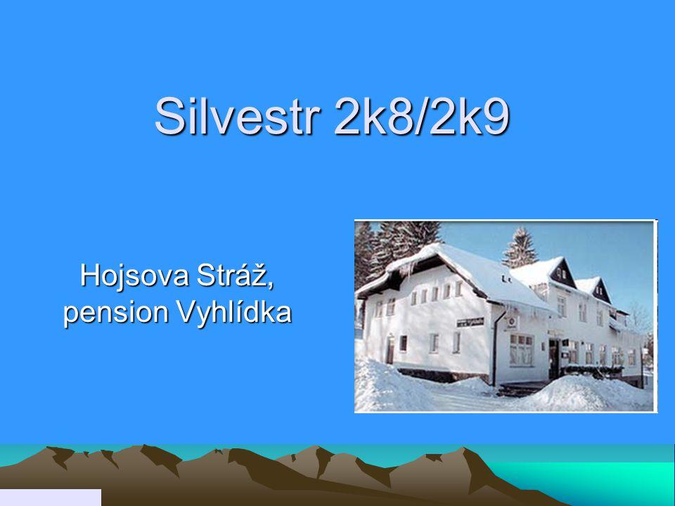 Silvestr 2k8/2k9 Hojsova Stráž, pension Vyhlídka
