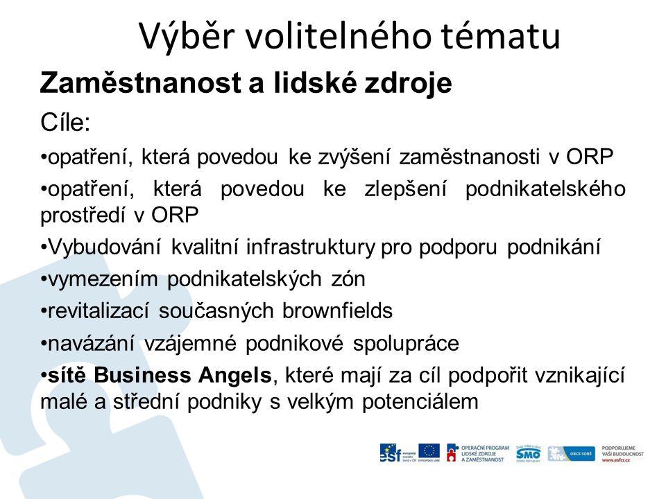 Výběr volitelného tématu Zaměstnanost a lidské zdroje Cíle: opatření, která povedou ke zvýšení zaměstnanosti v ORP opatření, která povedou ke zlepšení podnikatelského prostředí v ORP Vybudování kvalitní infrastruktury pro podporu podnikání vymezením podnikatelských zón revitalizací současných brownfields navázání vzájemné podnikové spolupráce sítě Business Angels, které mají za cíl podpořit vznikající malé a střední podniky s velkým potenciálem