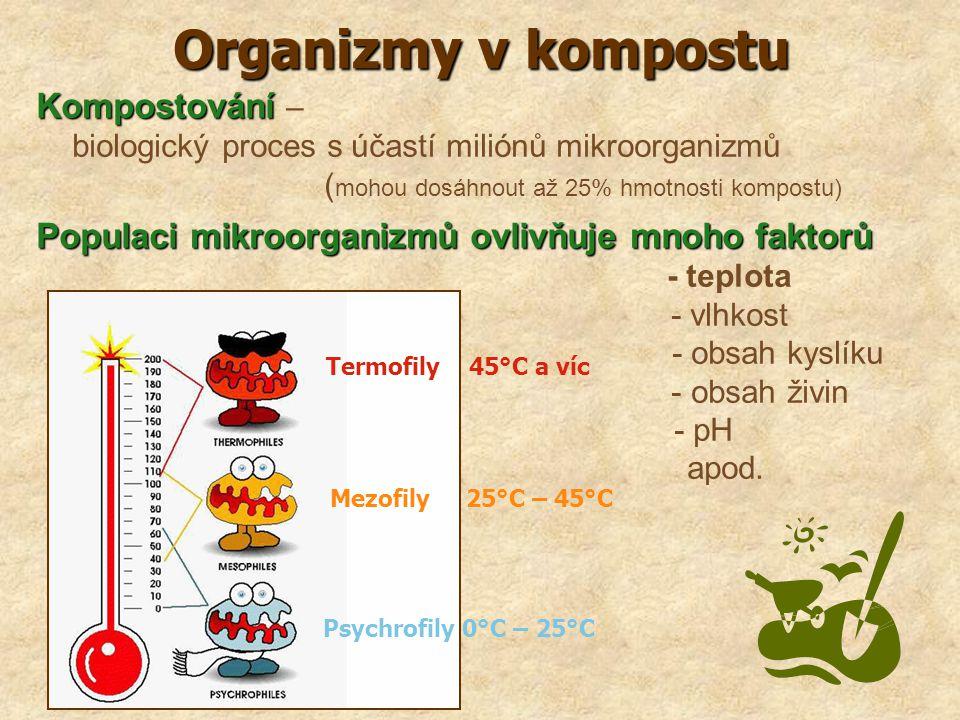 Organizmy v kompostu Kompostování Kompostování – biologický proces s účastí miliónů mikroorganizmů ( mohou dosáhnout až 25% hmotnosti kompostu) Popula