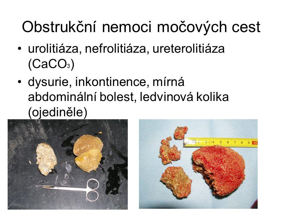 Obstrukční nemoci močových cest urolitiáza, nefrolitiáza, ureterolitiáza (CaCO 3 ) dysurie, inkontinence, mírná abdominální bolest, ledvinová kolika (