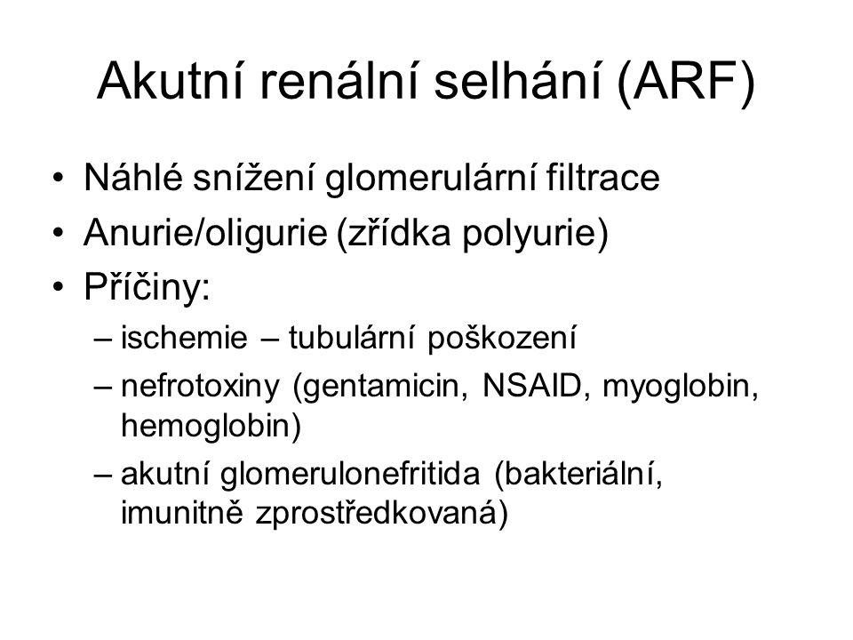 Akutní renální selhání (ARF) Náhlé snížení glomerulární filtrace Anurie/oligurie (zřídka polyurie) Příčiny: –ischemie – tubulární poškození –nefrotoxi