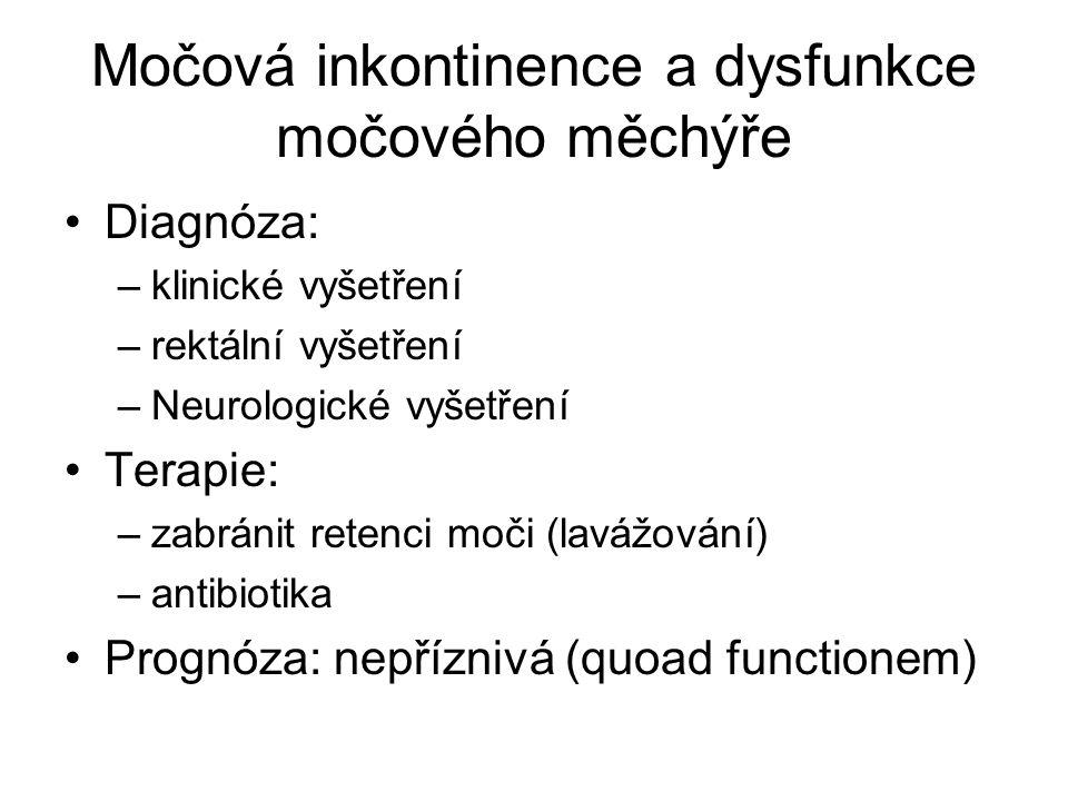 Diagnóza: –klinické vyšetření –rektální vyšetření –Neurologické vyšetření Terapie: –zabránit retenci moči (lavážování) –antibiotika Prognóza: nepřízni