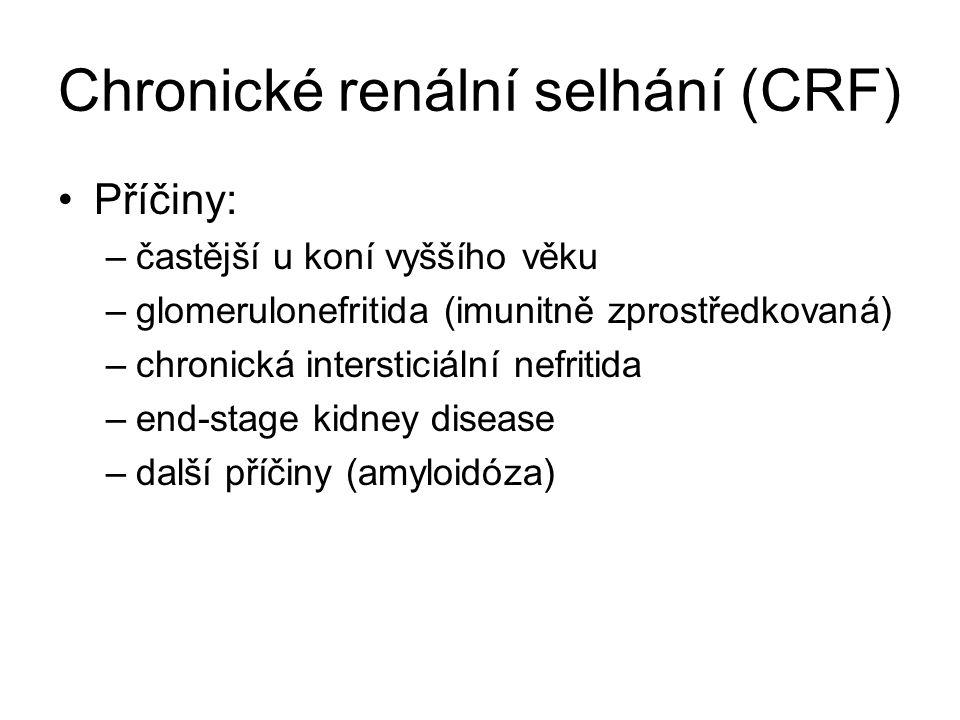 Chronické renální selhání (CRF) Příčiny: –častější u koní vyššího věku –glomerulonefritida (imunitně zprostředkovaná) –chronická intersticiální nefrit