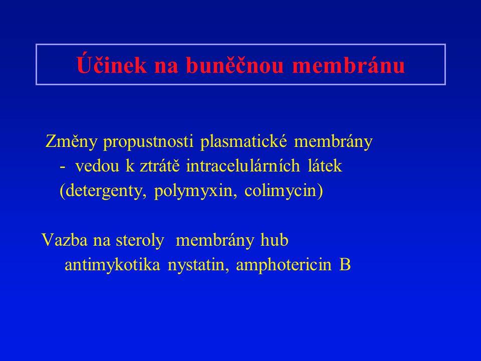 Účinek na buněčnou membránu Změny propustnosti plasmatické membrány - vedou k ztrátě intracelulárních látek (detergenty, polymyxin, colimycin) Vazba n