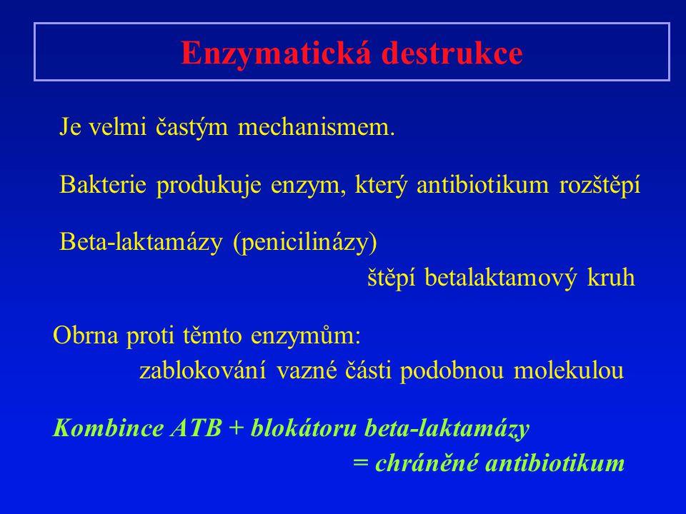 Enzymatická destrukce Je velmi častým mechanismem. Bakterie produkuje enzym, který antibiotikum rozštěpí Beta-laktamázy (penicilinázy) štěpí betalakta