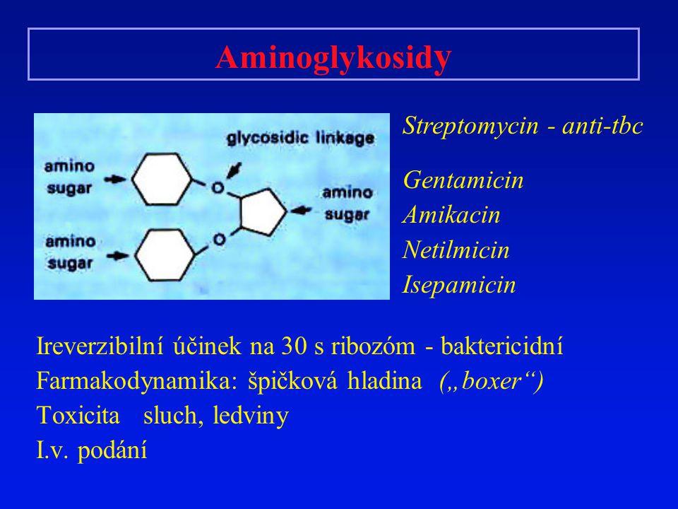 """Aminoglykosid y Ireverzibilní účinek na 30 s ribozóm - baktericidní Farmakodynamika: špičková hladina (""""boxer"""") Toxicita sluch, ledviny I.v. podání St"""