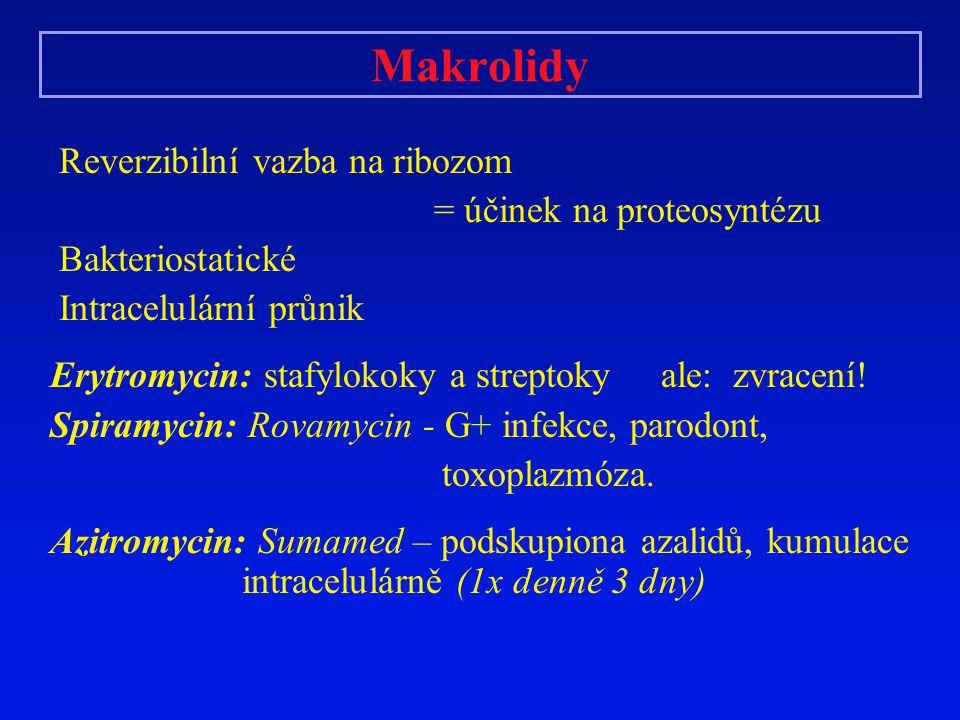 Makrolidy Reverzibilní vazba na ribozom = účinek na proteosyntézu Bakteriostatické Intracelulární průnik Erytromycin: stafylokoky a streptoky ale: zvr