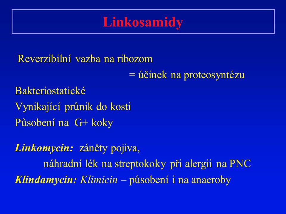 Linkosamidy Reverzibilní vazba na ribozom = účinek na proteosyntézu Bakteriostatické Vynikající průnik do kosti Působení na G+ koky Linkomycin: záněty