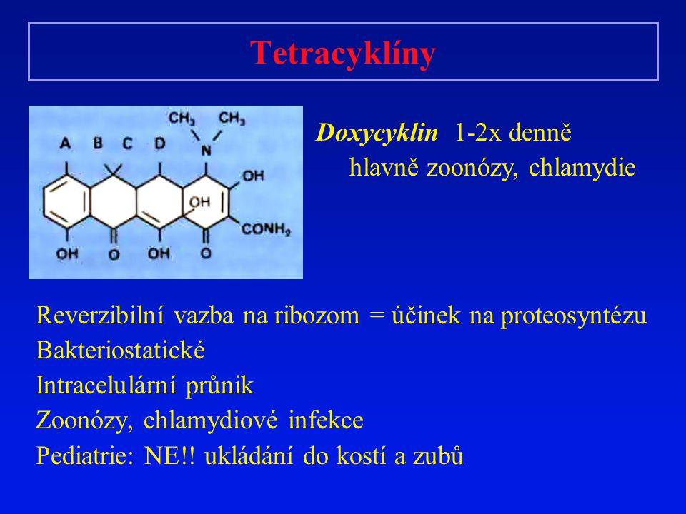 Tetracyklíny Reverzibilní vazba na ribozom = účinek na proteosyntézu Bakteriostatické Intracelulární průnik Zoonózy, chlamydiové infekce Pediatrie: NE