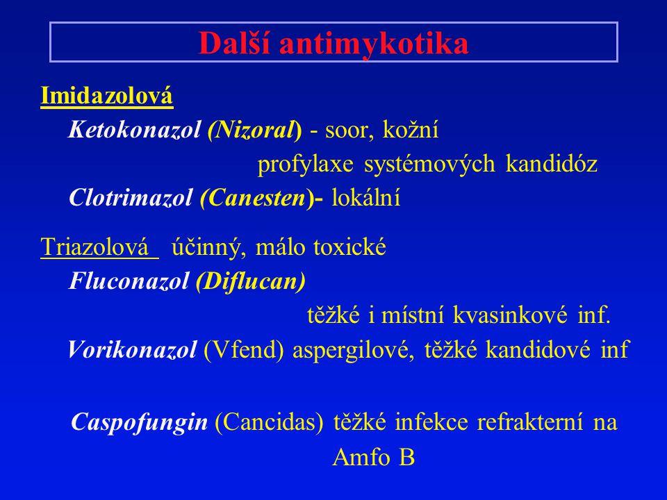 Další antimykotika Imidazolová Ketokonazol (Nizoral) - soor, kožní profylaxe systémových kandidóz Clotrimazol (Canesten)- lokální Triazolová účinný, m