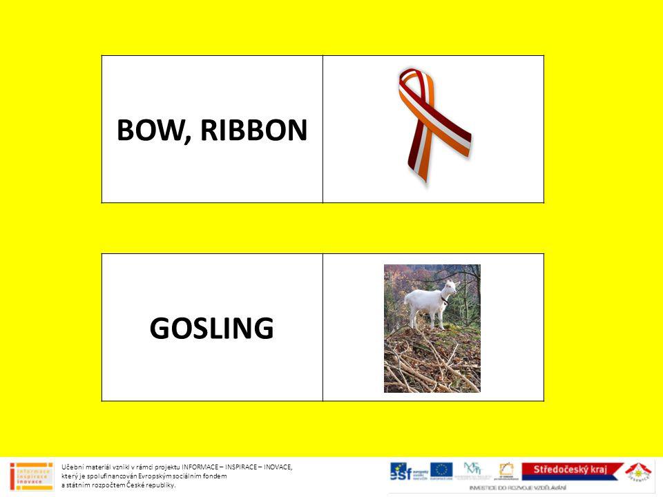 BOW, RIBBON GOSLING Učební materiál vznikl v rámci projektu INFORMACE – INSPIRACE – INOVACE, který je spolufinancován Evropským sociálním fondem a státním rozpočtem České republiky.