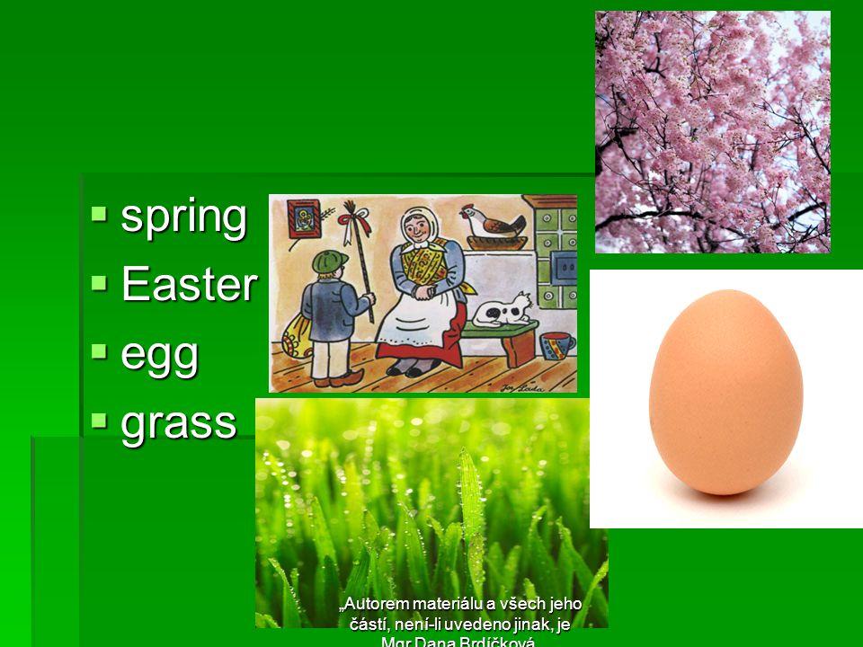 """ spring  Easter  egg  grass """"Autorem materiálu a všech jeho částí, není-li uvedeno jinak, je Mgr.Dana Brdíčková."""