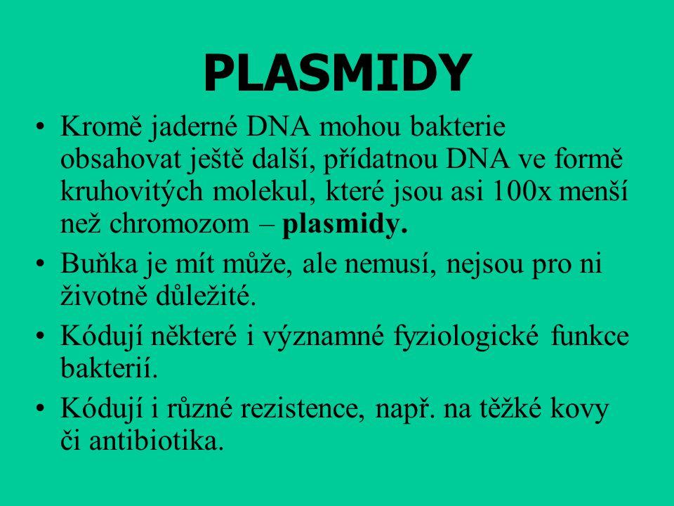 PLASMIDY Kromě jaderné DNA mohou bakterie obsahovat ještě další, přídatnou DNA ve formě kruhovitých molekul, které jsou asi 100x menší než chromozom – plasmidy.