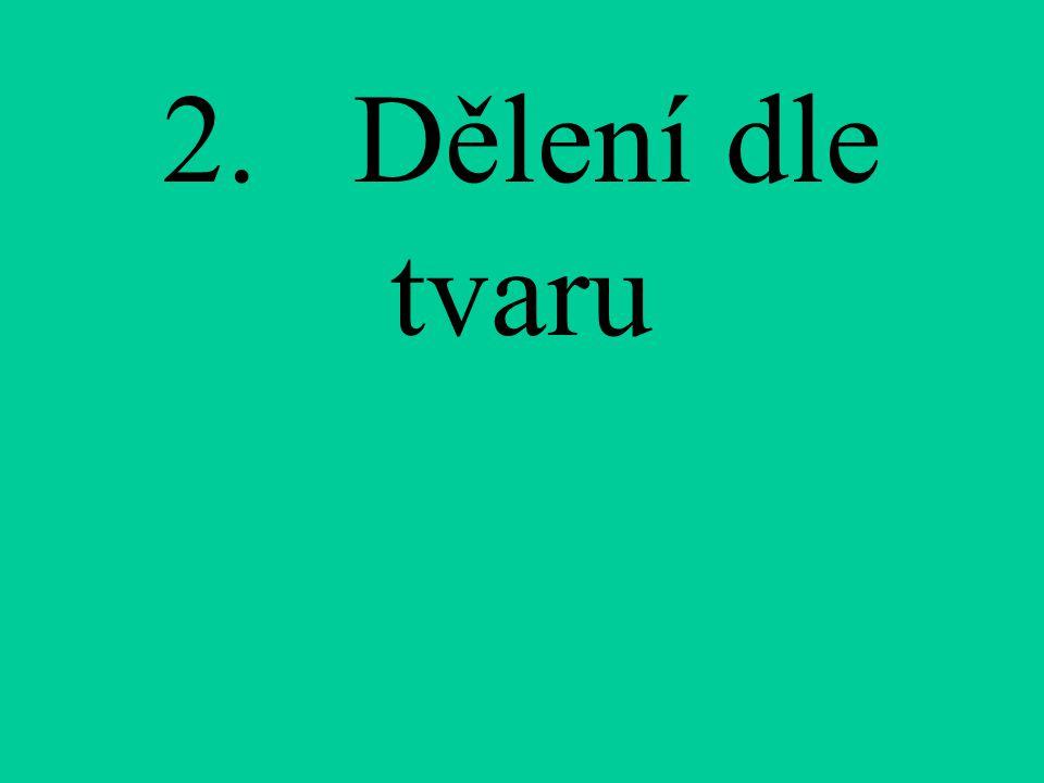 2. Dělení dle tvaru