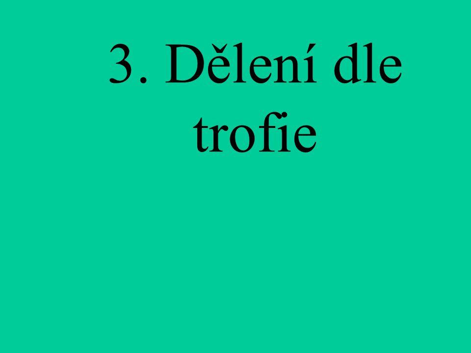 3. Dělení dle trofie