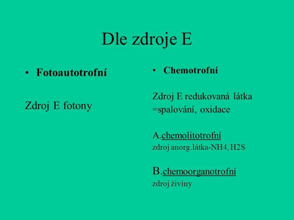 Dle zdroje E Fotoautotrofní Zdroj E fotony Chemotrofní Zdroj E redukovaná látka =spalování, oxidace A.chemolitotrofní zdroj anorg.látka-NH4, H2S B.