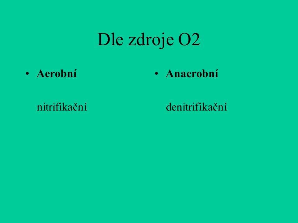 Dle zdroje O2 Aerobní nitrifikační Anaerobní denitrifikační