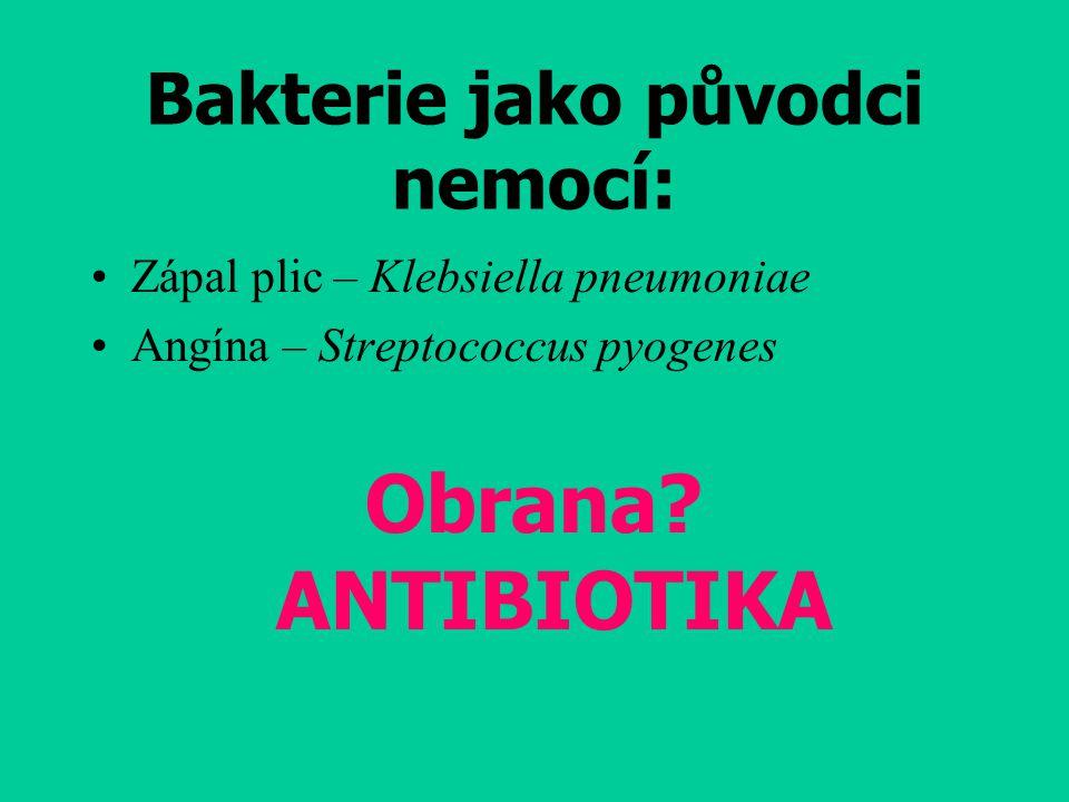 Bakterie jako původci nemocí: Zápal plic – Klebsiella pneumoniae Angína – Streptococcus pyogenes Obrana? ANTIBIOTIKA