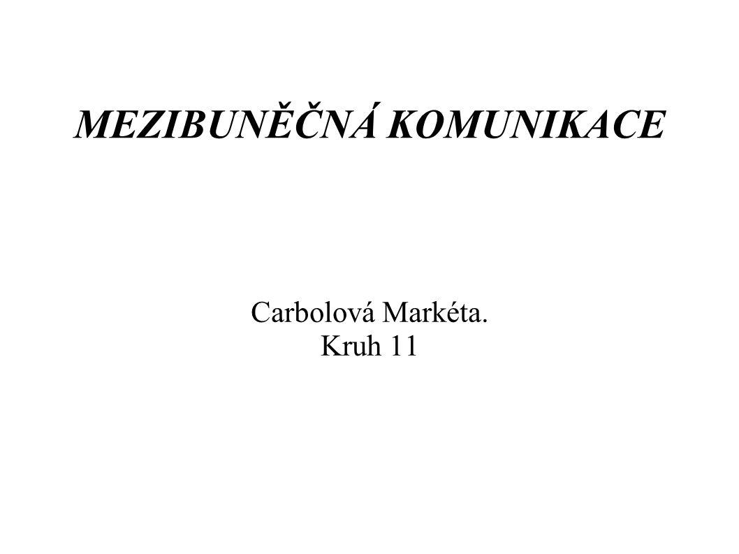 MEZIBUNĚČNÁ KOMUNIKACE Carbolová Markéta. Kruh 11