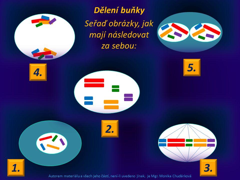 Autorem materiálu a všech jeho částí, není-li uvedeno jinak, je Mgr. Monika Chudárková Dělení buňky Seřaď obrázky, jak mají následovat za sebou: 4. 1.
