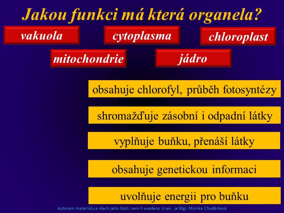 vakuola jádro cytoplasma chloroplast mitochondrie obsahuje chlorofyl, průběh fotosyntézy shromažďuje zásobní i odpadní látky vyplňuje buňku, přenáší l