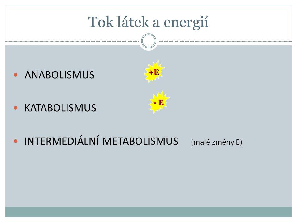 Tok látek a energií ANABOLISMUS KATABOLISMUS INTERMEDIÁLNÍ METABOLISMUS (malé změny E) +E - E