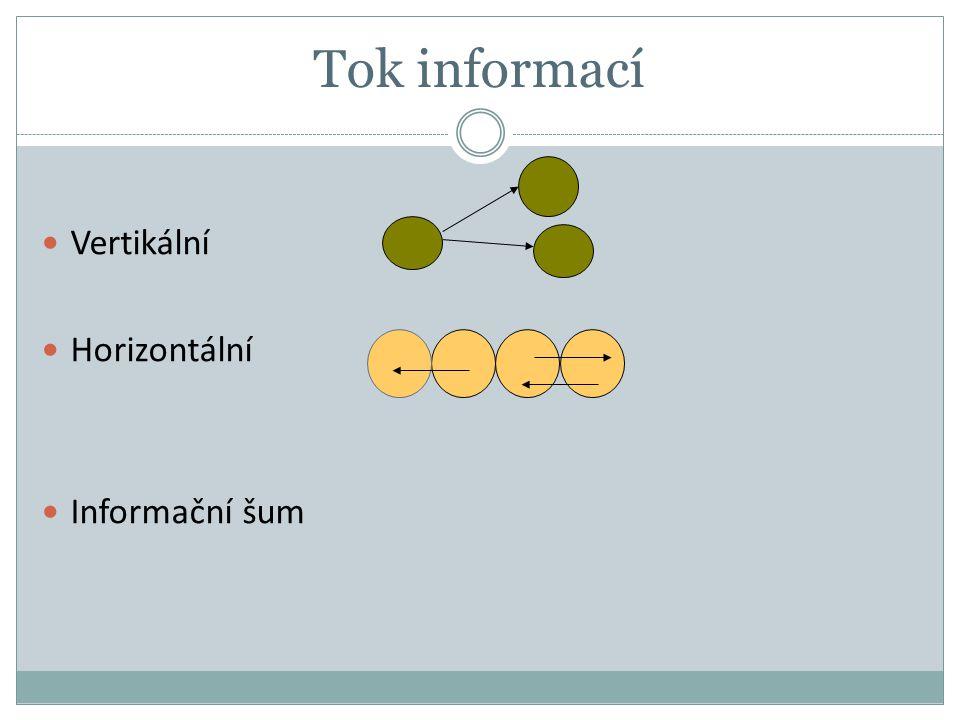 Tok informací Vertikální Horizontální Informační šum